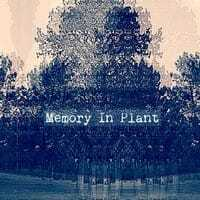 Memory In Plant