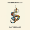 I'll Wait, de The Strumbellas